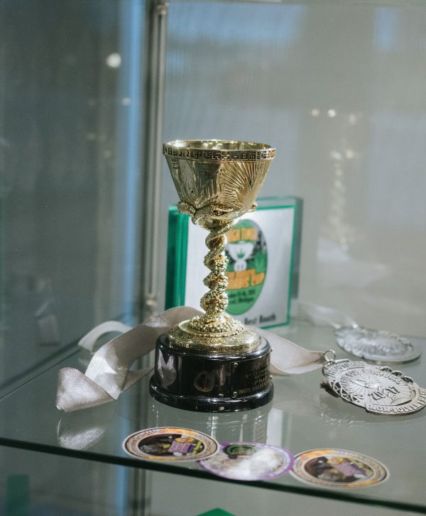 Trophy and medallions on a glass shelf